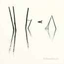 Haubentaucher-Grebes-Fisch-Reusen-Stange-vogel-bird-silhouette-Minimalismus-minimalistisch-minimalistic-black-white-schwarz-weiss-A_NIK6001a-sw