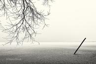 eis-gefroren-ice-frozen-lake-see-winter-snow-schnee-Landschaft-landscape-Minimalismus-minimalistisch-minimalistic-black-white-schwarz-weiss-C_SAM0236-sw