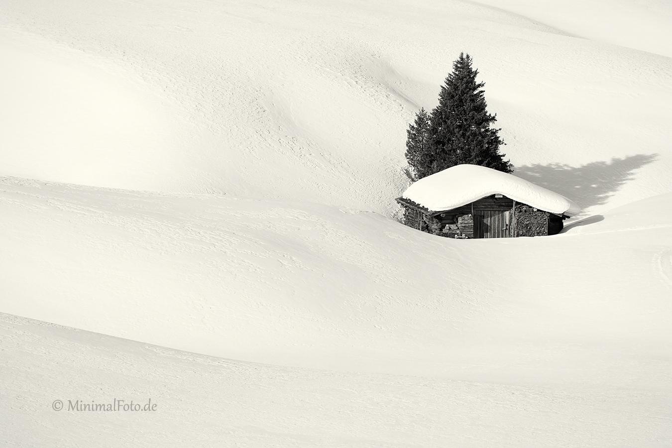fir-tree-Baum-huette-schuppen-shade-hut-tanne-winter-snow-schnee-Landschaft-landscape-Minimalismus-minimalistisch-minimalistic-black-white-schwarz-weiss-Italien-B_MG_2219-sw