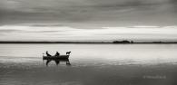 boot-boat-hund-dog-See-Lake-Minimalismus-minimalistisch-minimalistic-people-Menschen-Silhouette-black-white-schwarz-weiss-C_SAM_0943b-sw